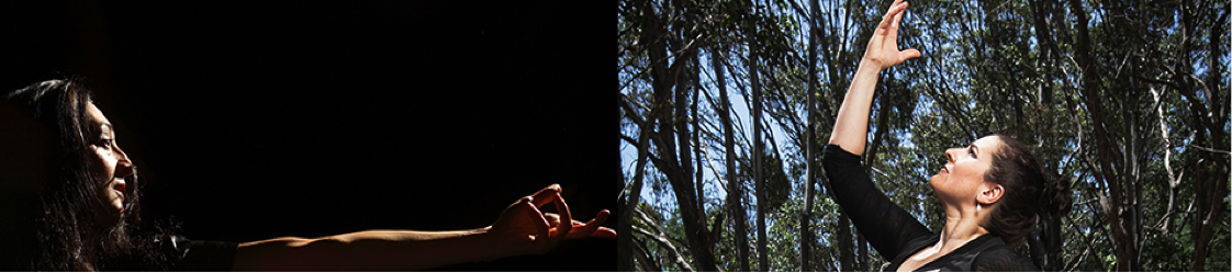 FORGE AND BUSH BAILANDO - NSW